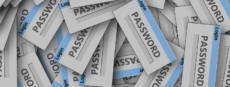 WordPress password management best practices
